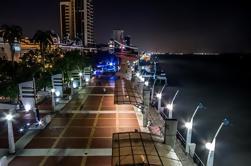 Ciudad de Guayaquil de noche y velada por Guayas