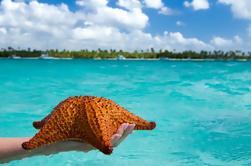 Excursão de um dia à Ilha Tropical de Saona