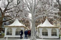 Tour privado del mercado de Navidad de Dresde desde Praga