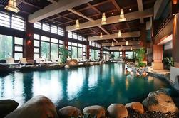 Chengdu Tour privado de Dujiangyan Panda base y Qingcheng Hot Springs incluyendo almuerzo