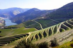 Descubrimiento del día completo en el valle del Duero incluyendo cuevas de Raposeira y cata de vinos