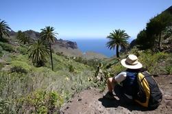 Tour de día completo de La Gomera