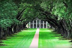 Privado con chofer e historiador Guiado Plantation Country Tour de Nueva Orleans