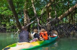 Crucero privado de la selva del mono: Viaje de Eco del día de Phuket