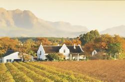 Tour de Winelands de Cape Cod de medio día desde Ciudad del Cabo