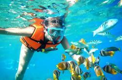 Snorkel Tour in Puerto Morelos van Cancun