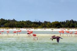 Excursión a la Isla Holbox desde Playa del Carmen