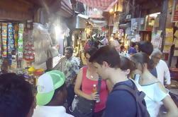 Excursión a pie en grupo pequeño de Agra