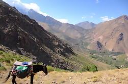 Excursión de un día guiada de alto Atlas desde Marrakech