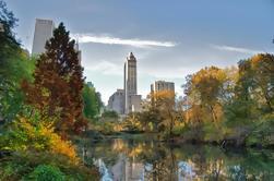 Tour privado combinado de Nueva York de Central Park y el Museo Metropolitano de Arte