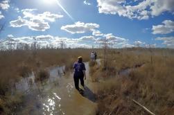 Diez mil islas y paseo del pantano