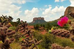 Excursión de un día a Sedona desde Phoenix