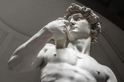 Visite la Galería de la Academia y el David