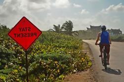 Excursión en bici de Tulum Insider: Ruinas Mayas, Caribe