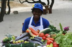 Cazadores y recolectores de Vanuatu de medio día Tour de comida incluyendo clase de cocina de Port Vila