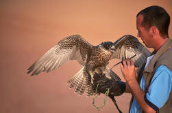 Por la mañana Dubai Desert Conservation Drive y Picnic Brunch