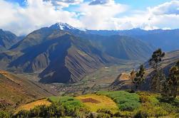 Valle Sagrado, Pisac y Montaña Chicón Día Completo