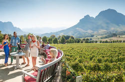 Full-Day Private Wine Tour van Paarl