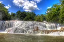 Excursión de un día al sitio arqueológico de Palenque