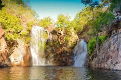 Excursión de un día a las Cataratas del Parque Nacional de Litchfield desde Darwin Incluyendo montículos de termitas y almuerzo