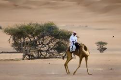 Tour Privado de Wahiba Sands Desert con Wadi Bani Khalid por 4X4