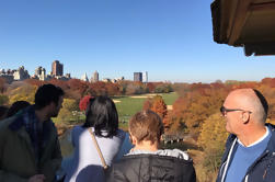 Vistas al Central Park Walking Tour