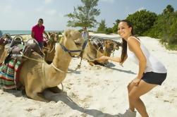 Camel Ride Tour de Cancún y la Riviera Maya