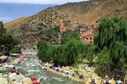 Excursion d'une journée à Berber Trails 4x4 à partir de Marrakech