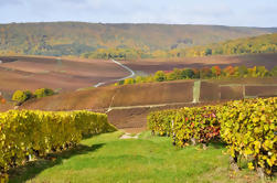 Champagne Tour desde París: Moet y Chandon, Hautvillers y la Casa de Mumm