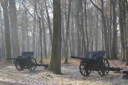 Excursión de un día a un grupo pequeño de la Primera Guerra Mundial desde París: Aisne-Marne