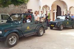 Pequeño grupo de Rajasthan Tour de Jaipur, incluyendo almuerzo tradicional
