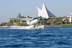 Tour de hidroaviones y Al Maha Wildlife Drive desde Dubai