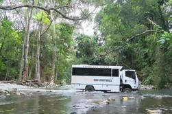 Cooktown 4WD Adventure Tour de Cairns ou Port Douglas