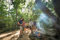 Excursão cultural Aboriginal da floresta húmida de Daintree de Cairns ou de Port Douglas