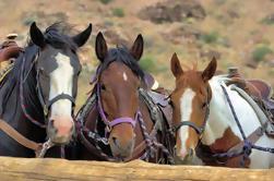 Paseo a caballo por Red Rock Canyon