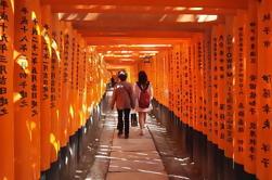Fushimi Inari y Sake Brewery Tour