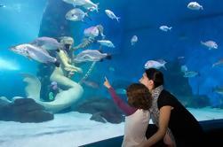 Saltar la línea: SEA LIFE Melbourne Aquarium Admission Ticket