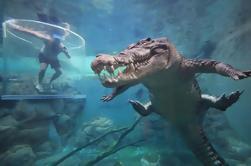 Gabbia della Morte al di Darwin Crocosaurus Cove