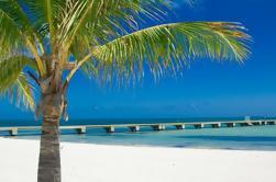 Viaje de vela y esnórquel a Key West desde Miami