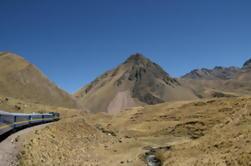 Traslado privado de ida y vuelta: Autobús o estación de tren de Puno al hotel Puno