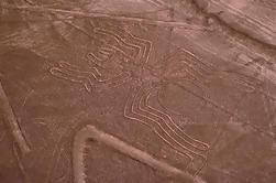 Nazca-lijnen Air Tour en Ballestas Eilanden Full-dag vanuit Lima