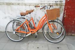 Tour en bicicleta para grupos pequeños en Kyoto