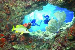 Key West Living Plongée sous-marine