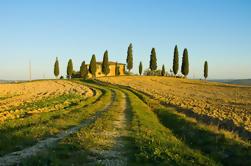 Excursión a la costa de Livorno: Excursión privada al vino de Chianti y Toscana
