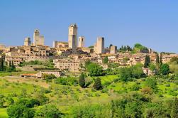 Excursión a la costa de Livorno: Excursión de un día a Siena y San Gimignano