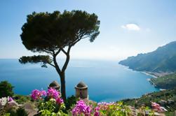 Excursión a la costa de Sorrento: Excursión de un día a Positano, Sorrento y Amalfi