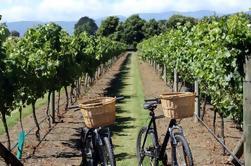 Excursión de medio día a los viñedos en bicicletas eléctricas desde Niza