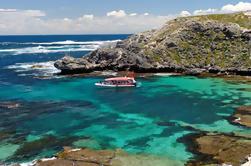 Rottnest Island Snorkeling Crucero con guía opcional de excursión a pie y almuerzo