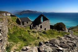Cliffs of Moher Tour desde Dublín