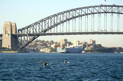 Excursões de Kayak do porto de Sydney